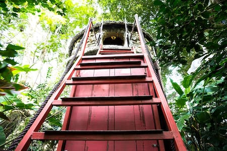 Cosy Tree House Homestay just 15' from Hanoi City - Hanoi, Hoàn Kiếm, Hanoi, Vietnam