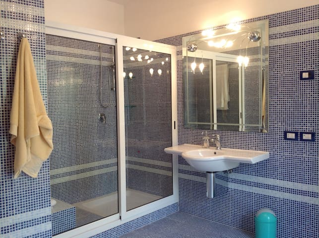 Master bedroom bathroom picture 2