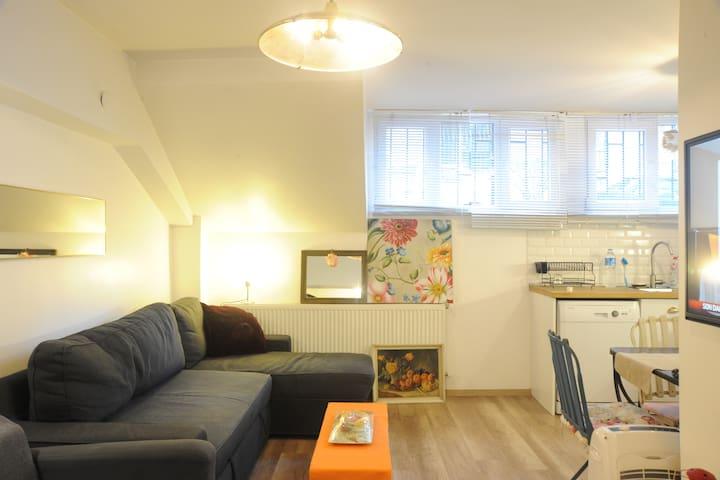 Compact & comfy flat in Cihangir