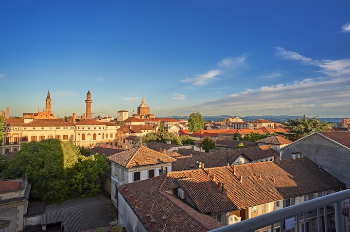 Overview on the historic centre of Pavia