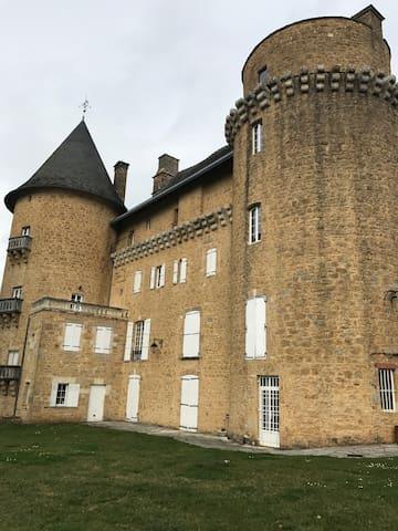 Très beau château au cœur du lot - Saint-Michel-de-Bannières - Linna