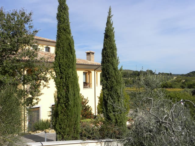 Bed & Breakfast Il Melograno a Ficulle, Umbria - Ficulle - Bed & Breakfast