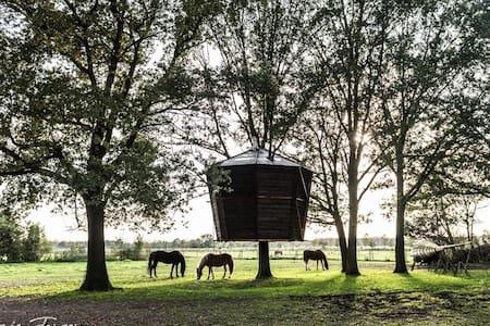 Treehouse Goldsworthy