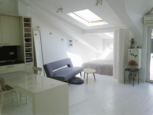 Beautiful open-space apartment by Vitosha Mountain