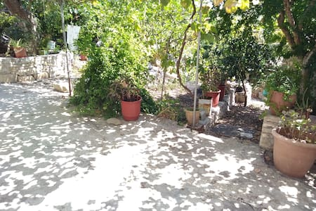 Central studio in Gaios(private green garden)
