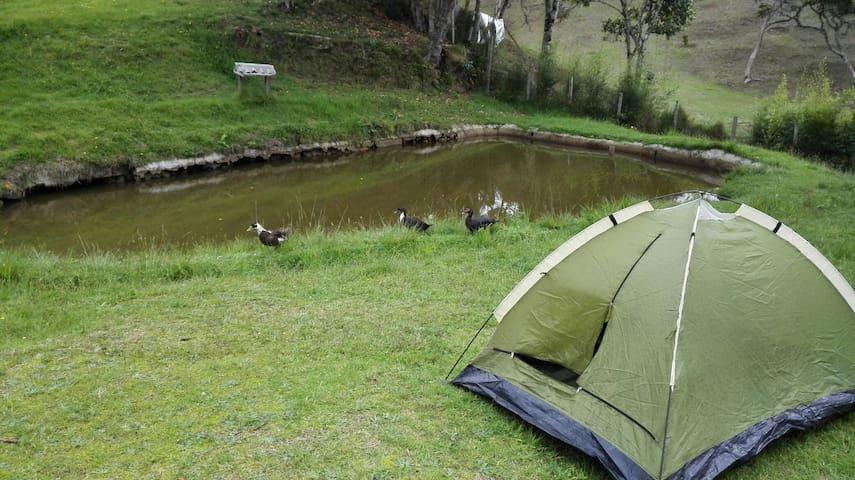 Camping en santa elena - santa elena