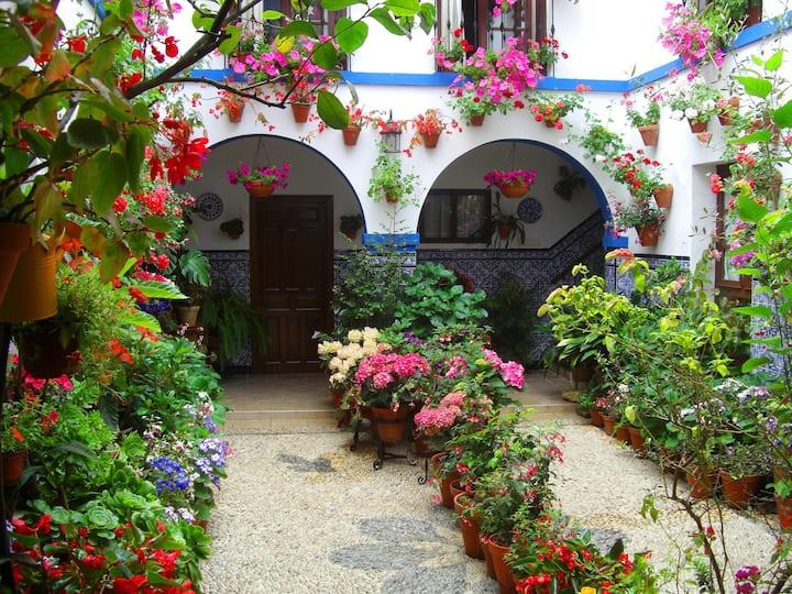 Room in Casa Patio