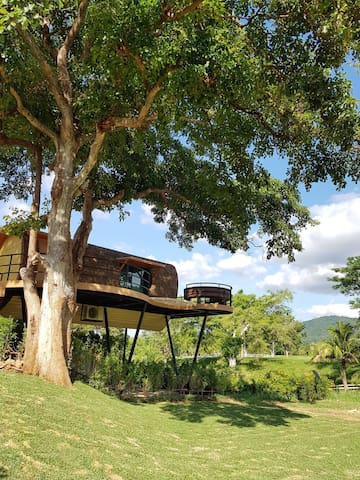 Khaoyai TreeHouse