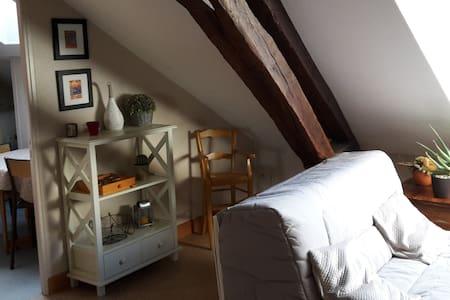 Studio douillet au coeur de Corbigny - Corbigny - Appartement