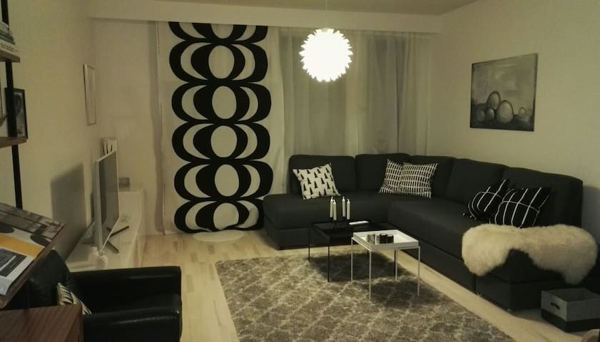 Large room with a cosy sofabed - Helsinki - Leilighet