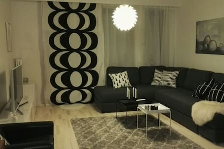 Large room with a cosy sofabed - Helsinki - Huoneisto