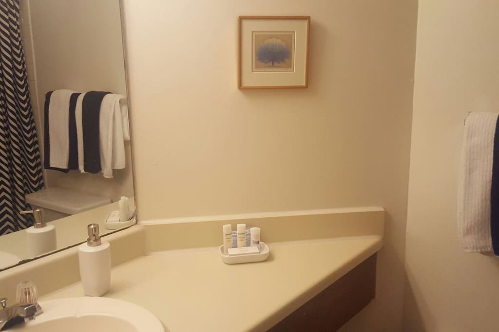 Bathroom: Towels, shampoo, conditioner, and lotion available at no charge.