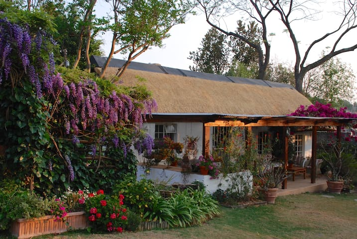Heron Cottage in Sandton. Self catering & secure.