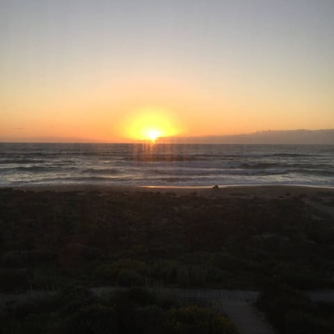 Oceanfront Beach House + 2 free Aquarium Tickests - Moss Landing - Stadswoning