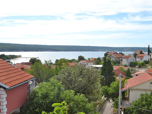1-room apartment 35 m² Ivan in Novigrad