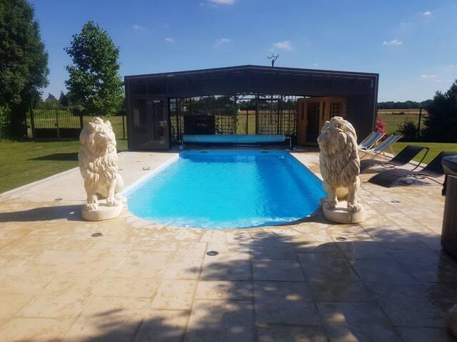 espace détente avec piscine , sauna , jacuzzi  , billard  avec vue sur les chevaux