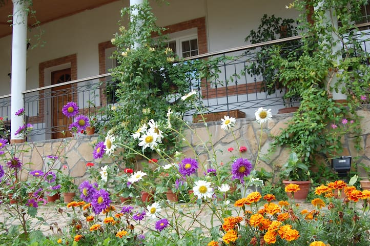 Well managed, extensive gardens, home grown herbs and vegetables