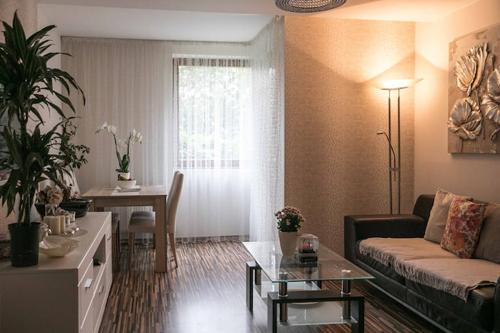 Cozy apartment located right in the city center
