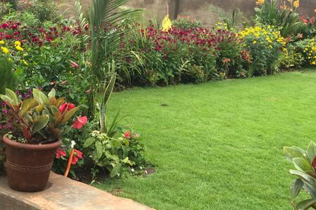 The City Garden Home