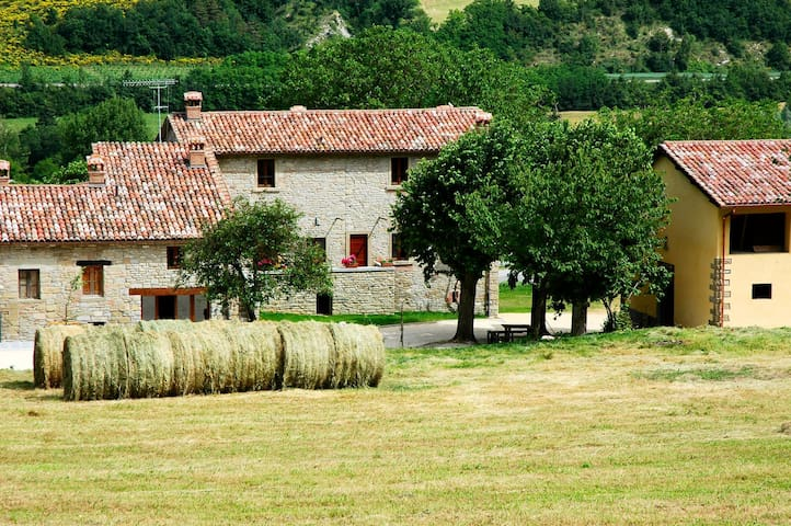 Marradi 3 - Vacation Rental in Mugello, Tuscany
