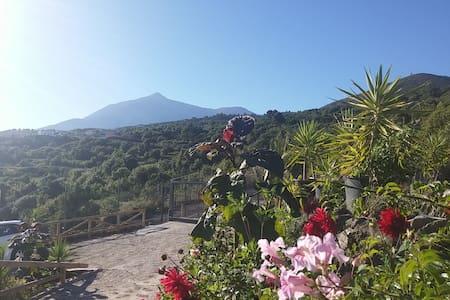Ecolodge Tenerife Rural 3 - Los Silos - Dom
