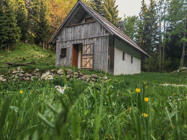Charming Chalet Vogar Bohinj - Stara Fužina