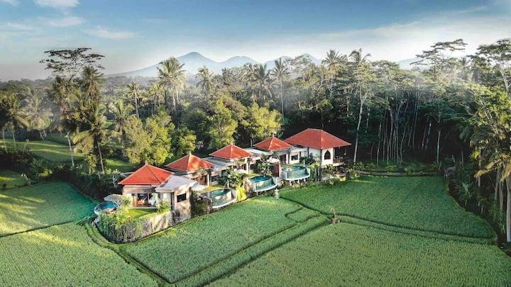 1BR private villa with private exotic pool
