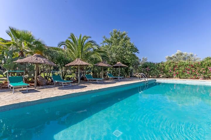 ....grosser Pool 4x12 Meter