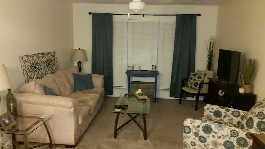 Clean, Spacious, and Available! - Jamestown - Apartamento