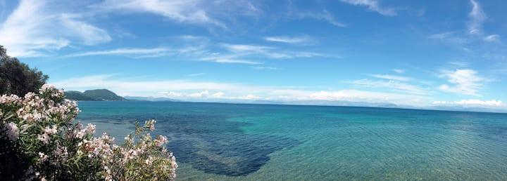 Beachfront property w/a stunning view