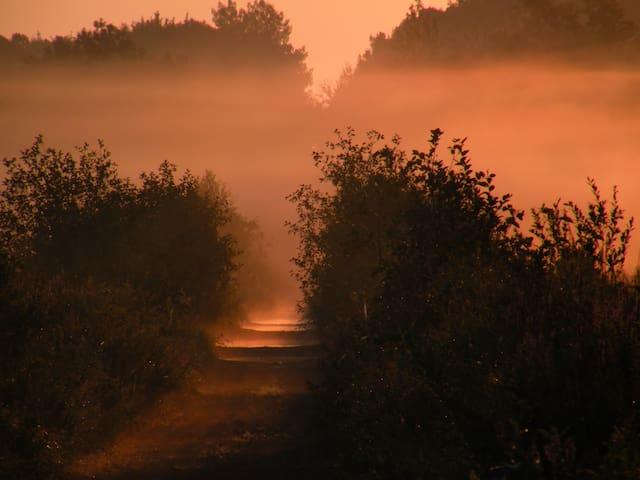 Trailer on a trail