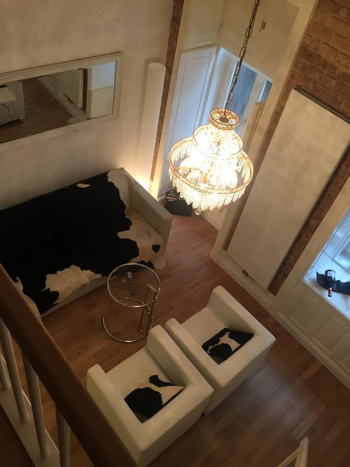 Vienna Loft Stil & Design Top-Lage  Innere Wien