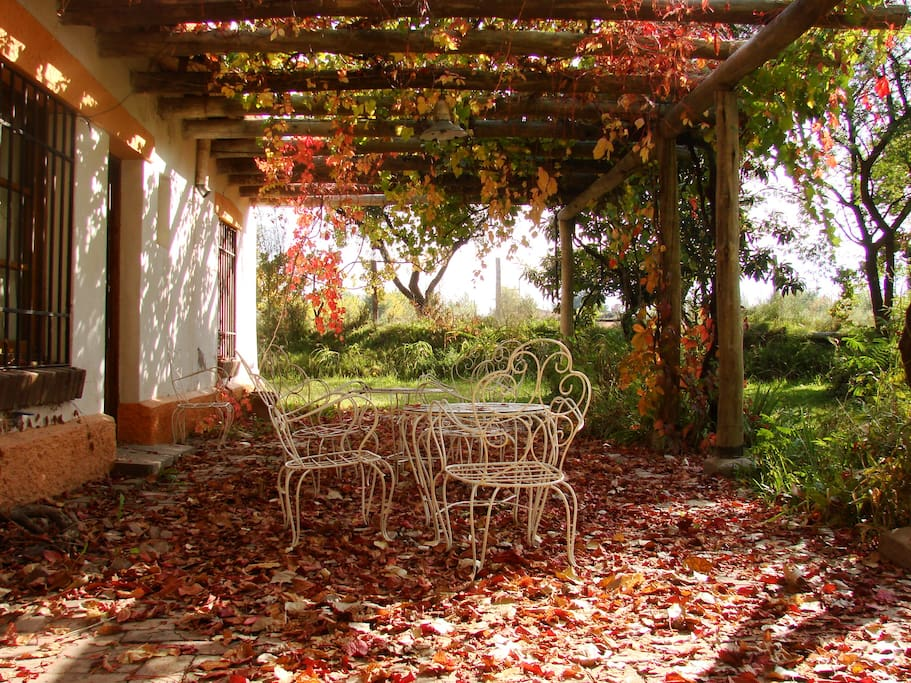 Front porch in autumn