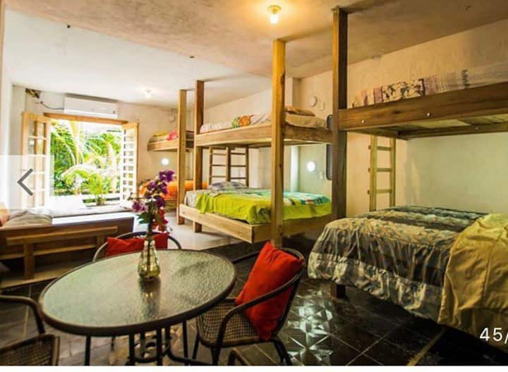 Habitación compartida Aloha 🤙🏼