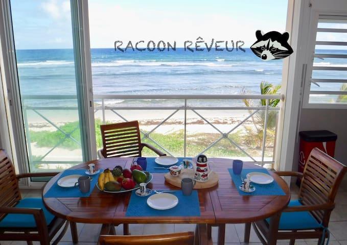 Le racoon rêveur appartement sur la plage