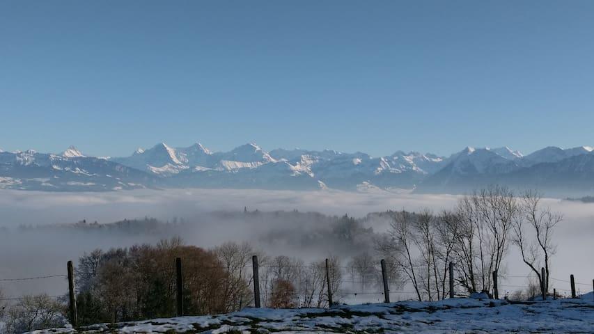 Eiger, Mönch & Jungfrau - nach 5 min. Fussmarsch sind die 3 grossen in voller Pracht ersichtlich.