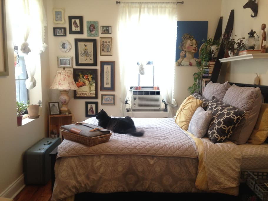 Bright, sunny room designed with books, art, plants and comfort in mind! (Kitty not included)