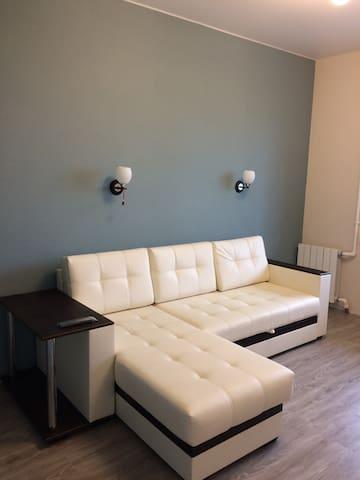 Апартаменты на Обводном - Arkhangelsk - Lägenhet