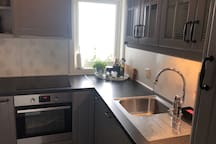 Fully equipped kitchen has stove and induction cooktop.