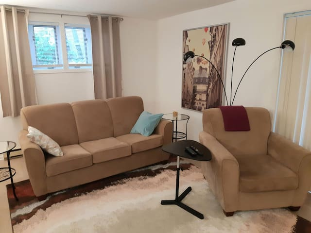 Newly Renovated One Bedroom Basement Suite