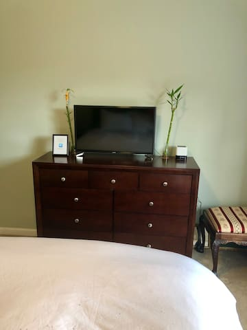 TV and dresser in Private bedroom