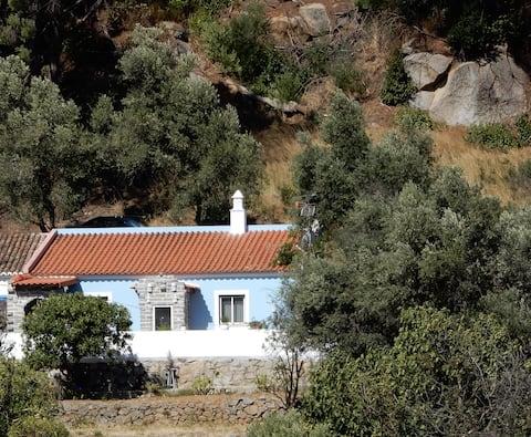 Lavender cottage in tranquil Spa Gardens