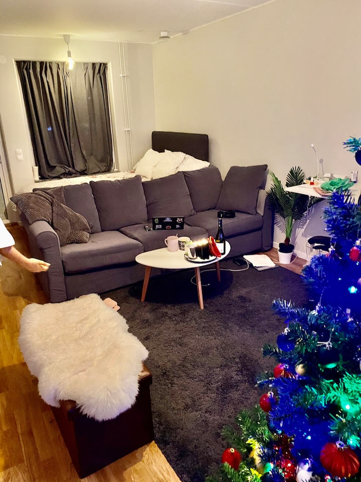 Cosy and themed studio apartment in Vallentuna