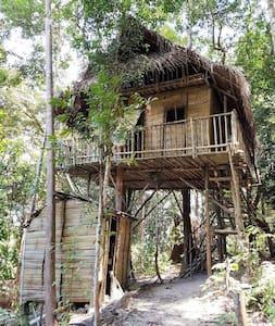 Rainforest Tree House - kulai