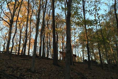 Rustic Woodland Cabin - Writer's Paradise - Νάσβιλ