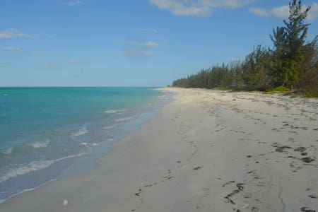 I N N Castle (Fishing a most!) 1 bedroom - Caicos Islands - 公寓