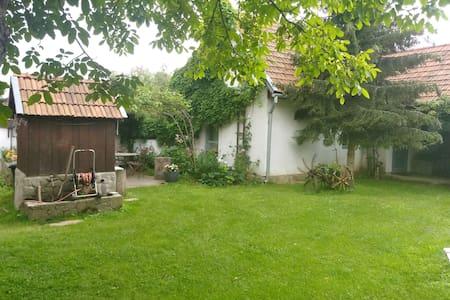 Brebu Nou, No. 162 - Guesthouse