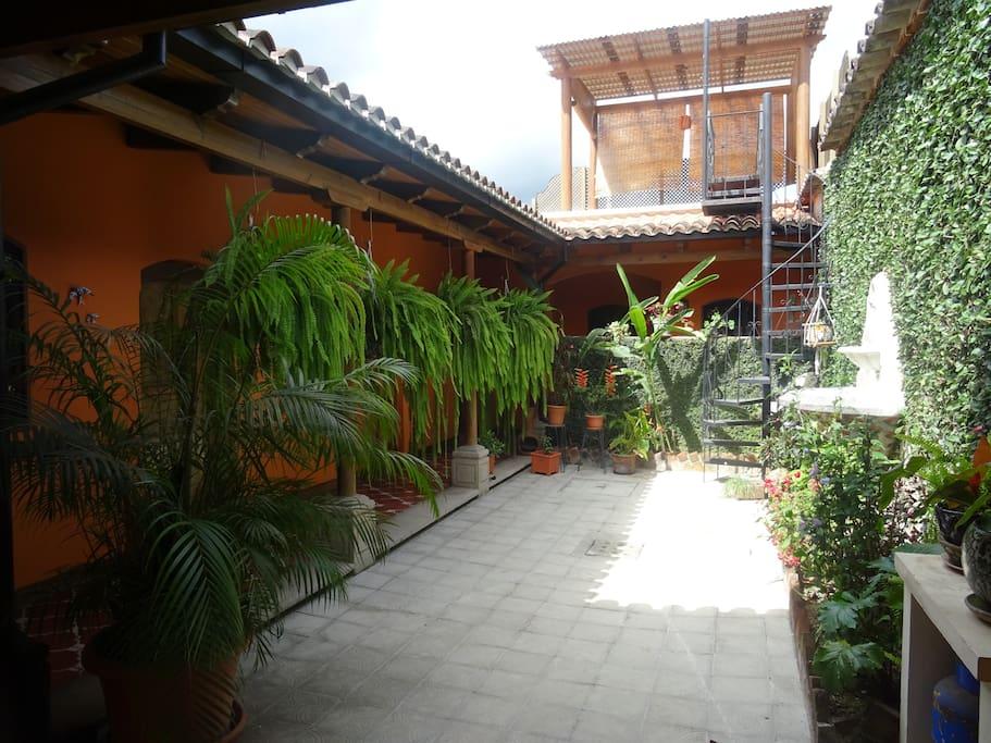 Patio central y terraza Central patio and terrace