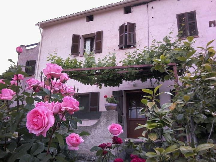 T2 Centre Corse Bisinchi
