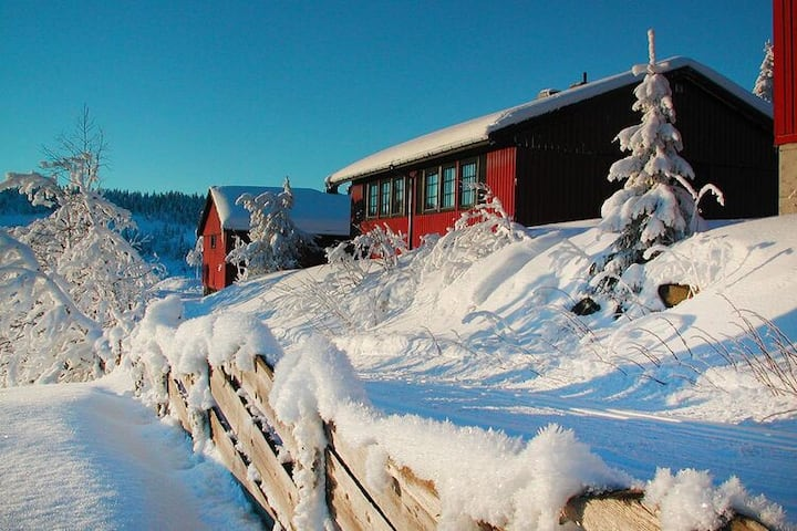 4 star holiday home in Skeikampen